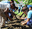 GFDD's Eco-Huertos Program Brings Year to-a-close with Creation of 8 New School and Community Gardens